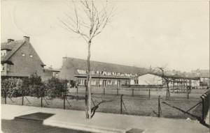 Kleuterschool de Korenbloem
